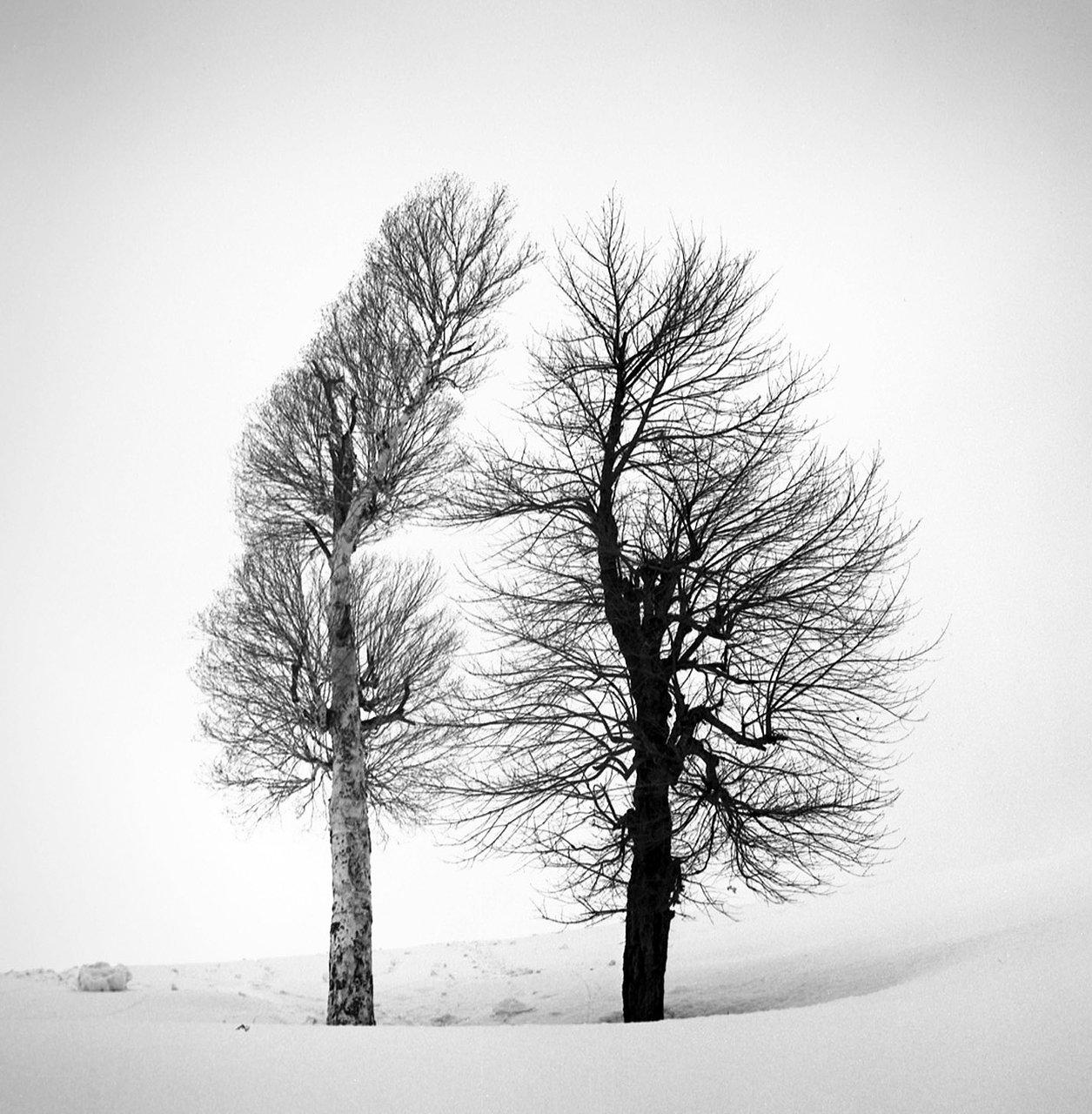 Two Lovers, Kashmir