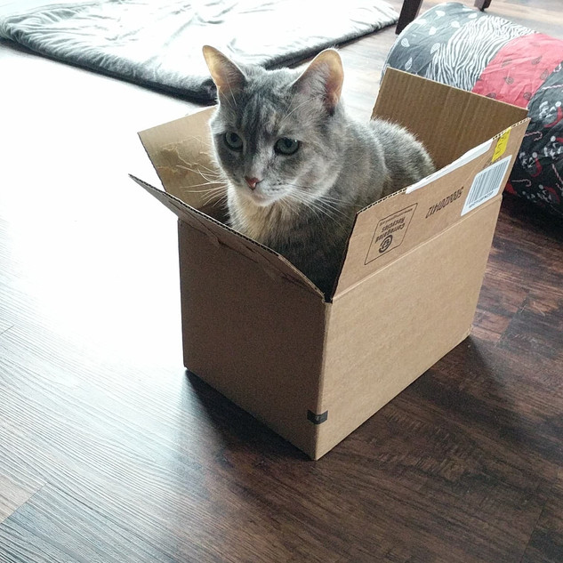 Sable-in-a-box