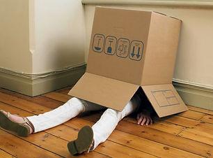 hiding in box.jpeg