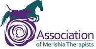 Association of Merishia  Therapists.jpg