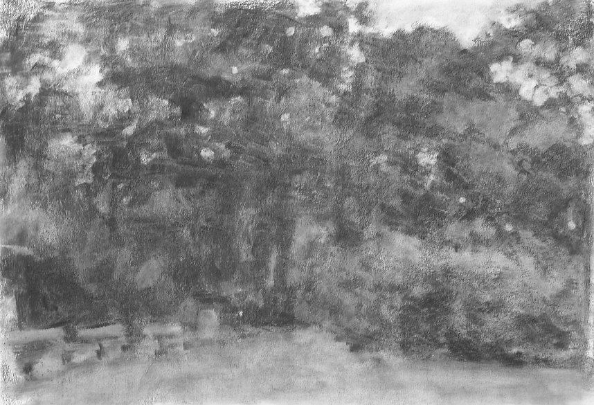 Kjersti Foyn - Trær