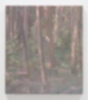 i skogen 2