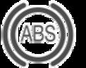 anti-brake-system