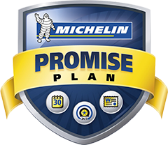 michelin-promise-plan.png