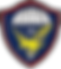 Veteranos Paraquedistas.png