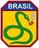1200px-Brazilian_Expeditionary_Forces_in