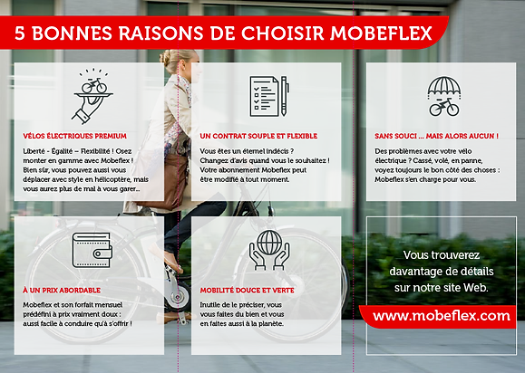 Mobeflex_Choix2.png