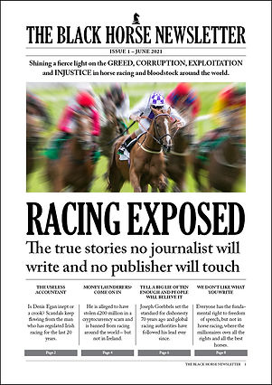 Issue 1 Cover Stroke.jpg