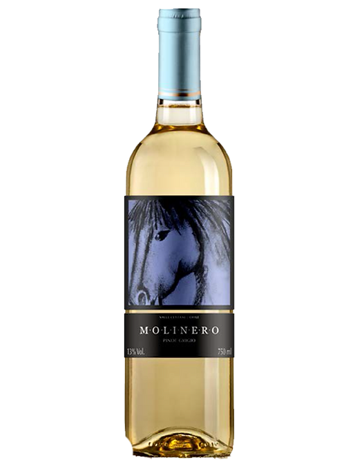Molinero Pinot Grigio Branco