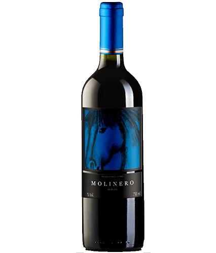 Vinho Chileno Molinero Merlot 750 mL