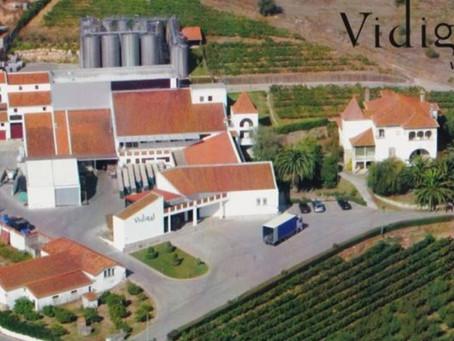 """Vidigal Wines - """"O melhor vinho possível ao mais baixo preço possível""""."""