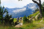 baqueira-beret-verano.jpg