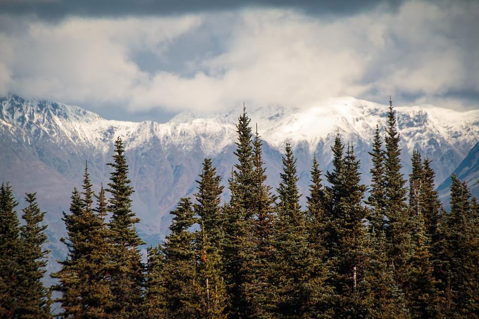 Yukon_IMG_8585