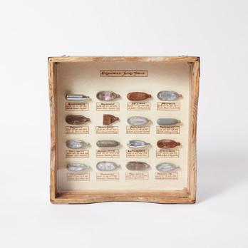 Nitruounites: Future Fossils