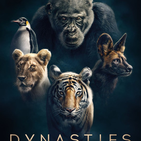A Swan Song to Nature: David Attenborough's Dynasties Reviewed
