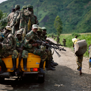 What Happened After 'Virunga'?