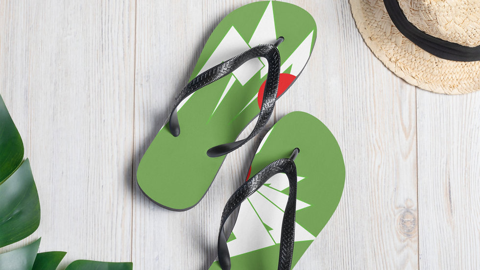 Flip-Flops / Price include shipping fees