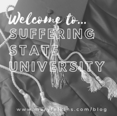 Welcome to S.S.U., Suffering State University