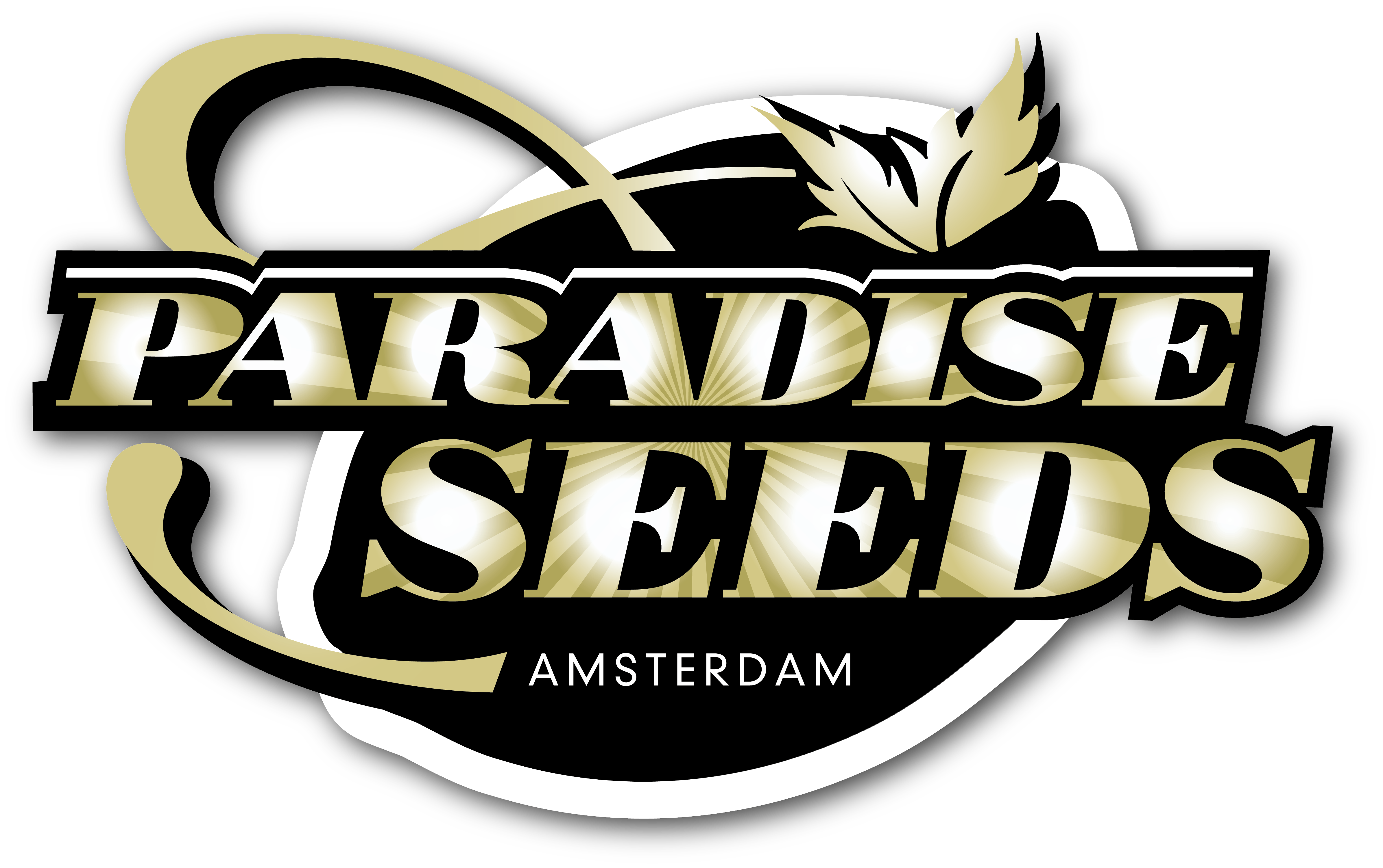 logo Paradise