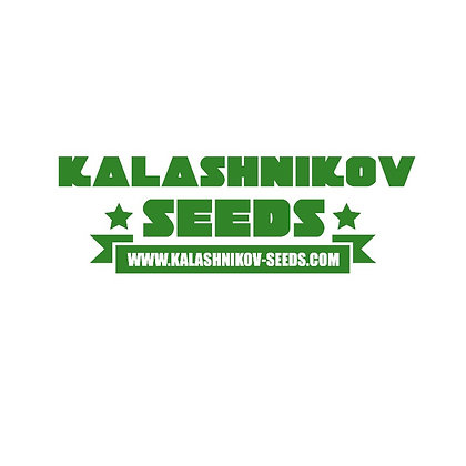 Northern Russian auto - Kalashnikov Seeds