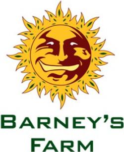 logo Barneys
