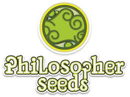 Philo Skunk - Philosopher Seeds