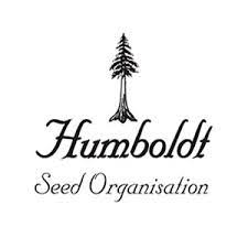 Green Crack - Humboldt Seeds Organization