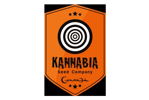 Big Band - Kannabia Seed Compagny