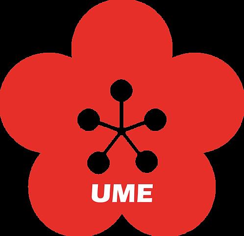 Onigiri for dinner | Ume (Plum)