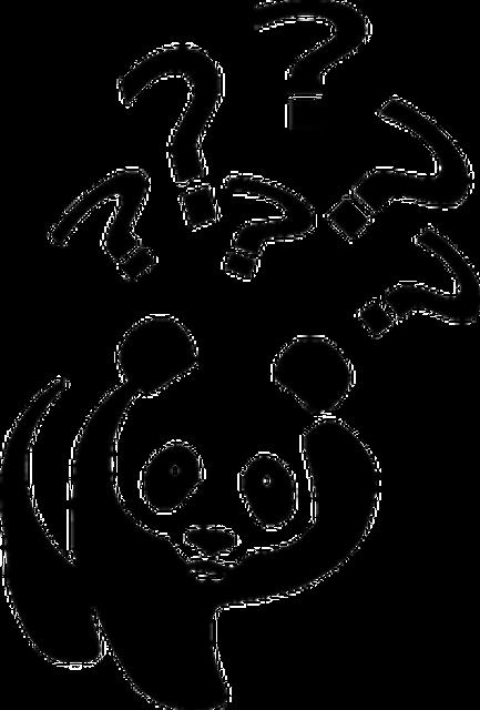bear-35723_640