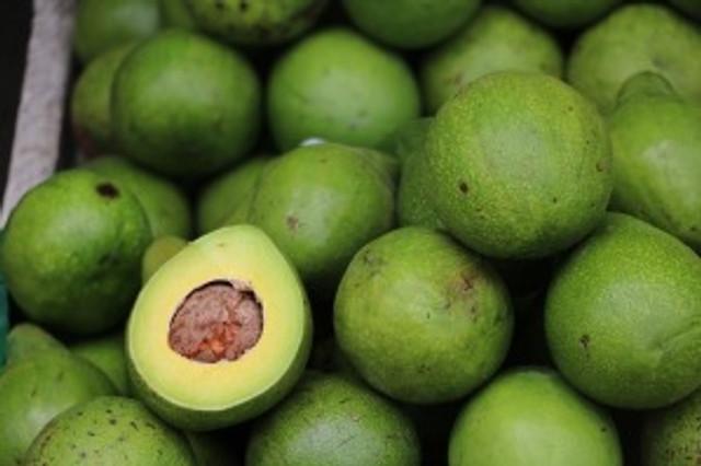 avocado-2742200_640
