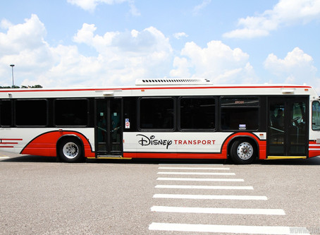 Disney Bus and the Death of Men