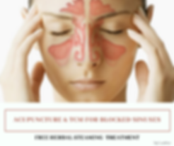 ACUPUNCTURE & TCM FOR BLOCKED SINUSES (2