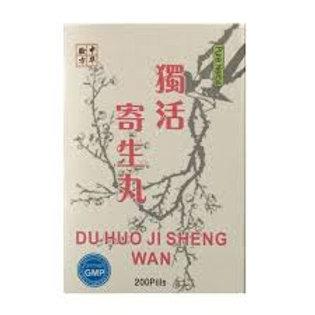 Du Huo Ji Sheng Wan