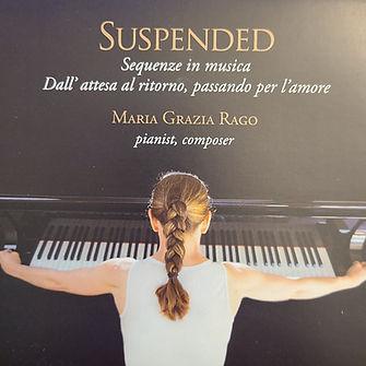 suspended2.jpg
