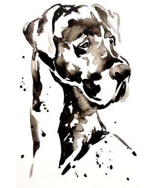 Great Dane - Ink