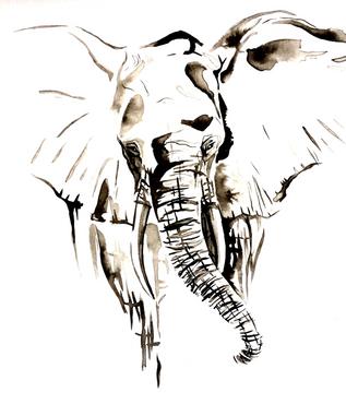 Elephant - Ink