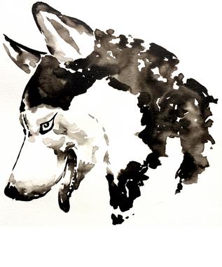 Husky - Ink