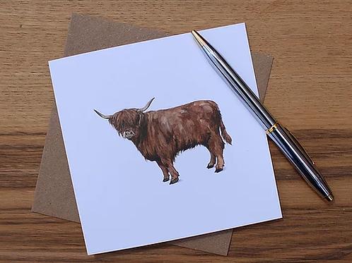 Angus - Highland Cow