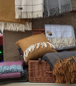 cushion wool