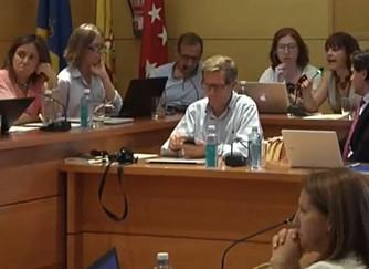 La degradación democrática de la vida política en Torrelodones (III)