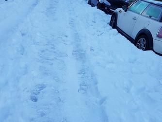 Valoración del Grupo Municipal Popular de la gestión de los efectos de la nevada en Torrelodones