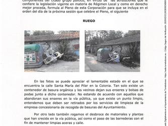 Ruego limpieza calle Santa María del Pilar