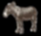 Donkey_edited.png
