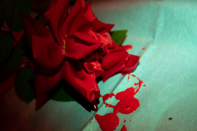 I'm Your Bloody Rose