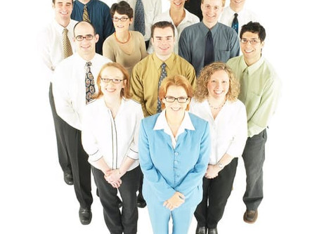 Office Professionals, who are they?