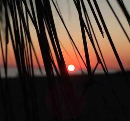 paradise beach - primo cancello di ostia