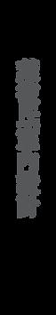 website_logo_v1-04.png