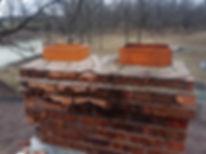 Racoon Chimney Cap.jpg