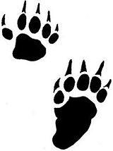 skunk prints.jpg